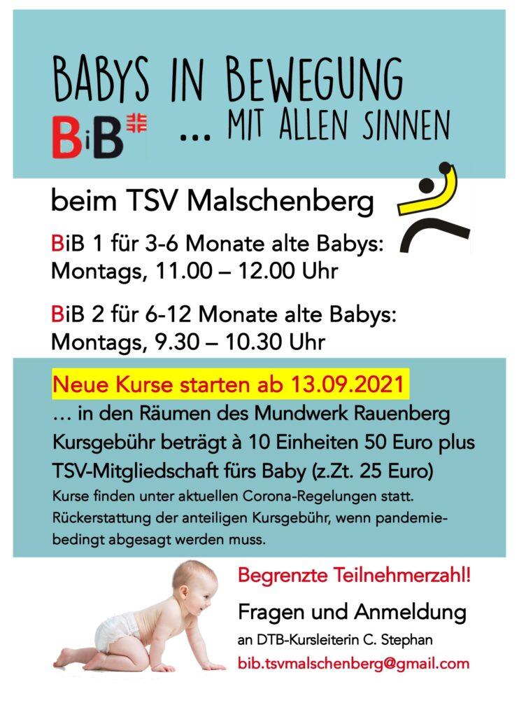 Informationen über die neuen BiB-Kurse